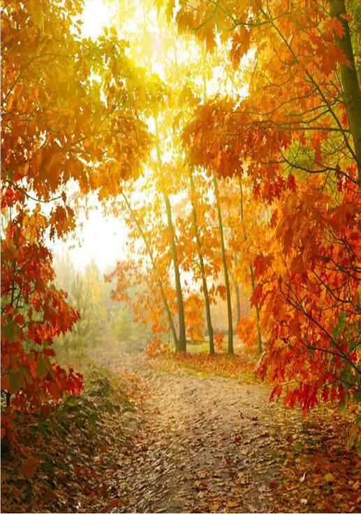 210cm*300cm(7x10ft)   Autumn theme Vinyl Custom Photography Backdrop Prop Photo Studio Backgrounds QT3302