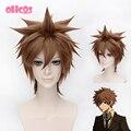 OHCOS Anime HITMAN REBORN Character Sawada Tsunayoshi 35cm Short Brown Synthetic Hair Cosplay Wig