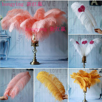 Big pole ostrich feather ostrich feather 50 pcs 55 60 cm/22 24 inches high quality ostrich feathers for wedding decorations