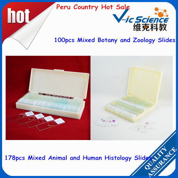 Peru country hot sale prepared slides 100pcs mixed botany and zoology slides & 178pcs mixed animal and human histology slides america market 100 pieces mixed botany zoology histology microscope prepared slides
