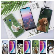 Transparent Soft Silicone Phone Case Cute Animal husky Poodle for huawei P Smart Nova 3i P20 P10 P9 P8 Lite 2017 Pro Plus