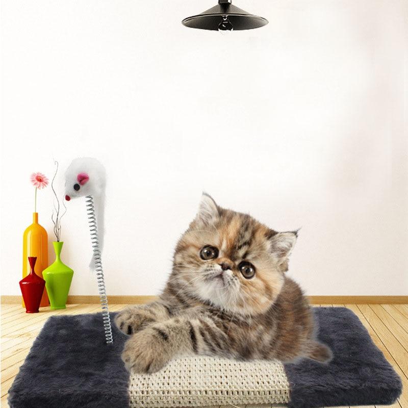 Pet, Kitten, Sisal, Toys, Protector, Play