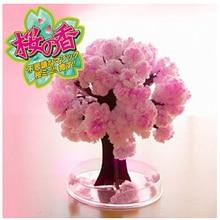 2017 14x11cm roz mare cresc Magic japonez Sakura hârtie copac Magic Cultivarea copaci Kit Desktop Cires Blossom Crăciun 5PCS