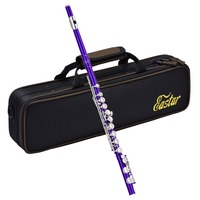Eastar Close Hole 16 Keys Flute C Key Cupronickel Nickel Plated Woodwind Instrument + Flute Stand Padded Bag Cleaning Cloth New