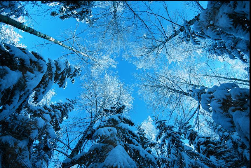 The best sfondo invernale desktop sfondo italiano for Foto inverno per desktop