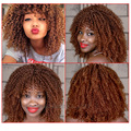 Womens Short Curly Brown Wig Afro  American Wigs  For Black Women short Kinky curly synthetic wig  Heat Resistant full wig