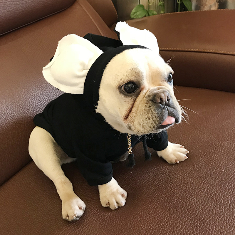 ba3e2a0390e287 Nowe zwierzęta odzież kostium dla psa dla małych psów buldog francuski  ubrania Chihuahua bawełna płaszcz wiosna zima Pug pies ubrania