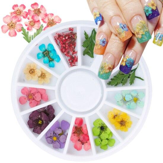 Сухоцветы лист ногтей украшения натуральный наклейка в виде цветка 3D сухой для маникюра ногтей наклейки ювелирные изделия УФ Гель-лак Маникюр TRFL-1 - Цвет: XHD
