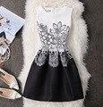 2017 novas mulheres do outono do verão ocasional vestidos de impressão floral do vintage uma linha de cintura alta sem mangas moda slim vest dress