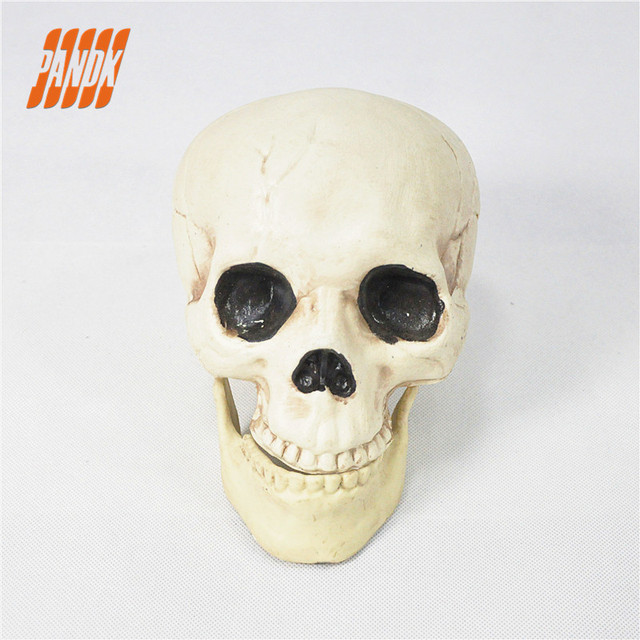 Halloween Skull Plastic Life Size Realistic Skull Prop Scary ...