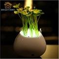 Nightlight LED Intelligent lights control lamp mini potted plant Flower Induction lights 220V for kids colorful bedroom decorati