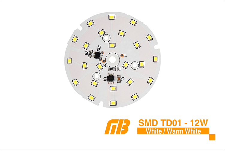 LED Down Light_TD-01 Chip_06