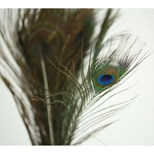 "Image 4 - נוצת טווס טבעית באיכות גבוהה 20 40 ס""מ אבזרי צילום DIY מלאכות קישוט נוצות לצילום סטודיו אבזרים"
