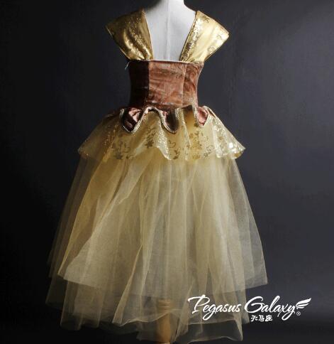Robe de danse lyrique moderne marron adulte enfants Ballet danse ballerine filles ballet robe justaucorps long tutu - 2