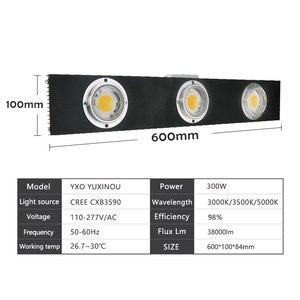 Image 2 - CREE CXB3590 300W COB Dimbare LED Grow Light Full Spectrum LED Lamp 38000LM = HPS 600W Groeien Lamp indoor Plant Groei Verlichting