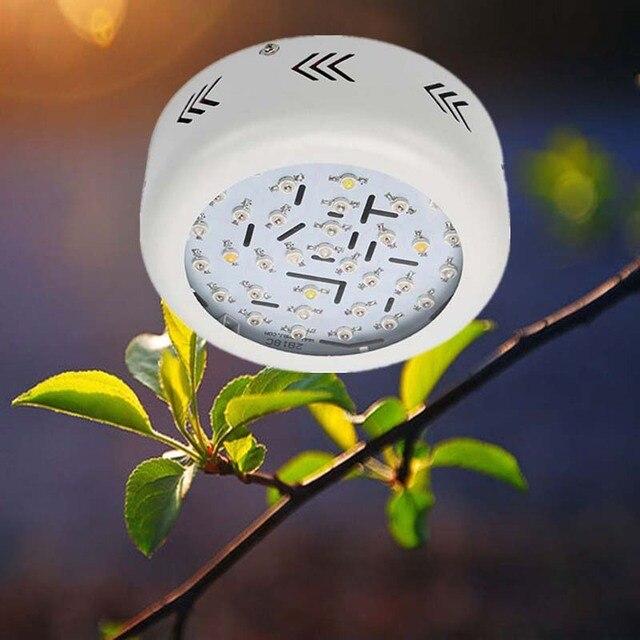 Us 7445 Doprowadziły Rosną światła Pełne Spektrum Dla Soczysty Kwiat Roślin 360 W Brak Migotania Lampy Roślin Hydroponika Oświetlenie