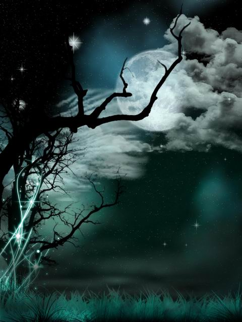 fantasy night sky photography backdrops vinyl printing halloween photo background for photo studio photographer props fotogarfia in background from consumer
