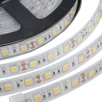 Led strip licht 5050 met volledige silicon buis waterdichte IP68 DC 12 V 300led 5 m RGB wit warm wit 3000 K 6500 k led outdoor lamp