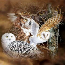 5D diy diamond painting cross stitch owl Needlework round drill full diamond embroidery unfinished crafts Home decoration
