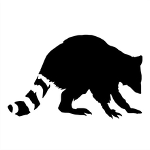 CS-803#12.5*20cm Raccoon on the car  funny sticker vinyl decal silver/black for auto stickers styling decoration