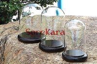 80x130mm Vintage Glaskuppel Vakuumglocke Mit Dark Holzsockel Fenster Display Lab Verwenden
