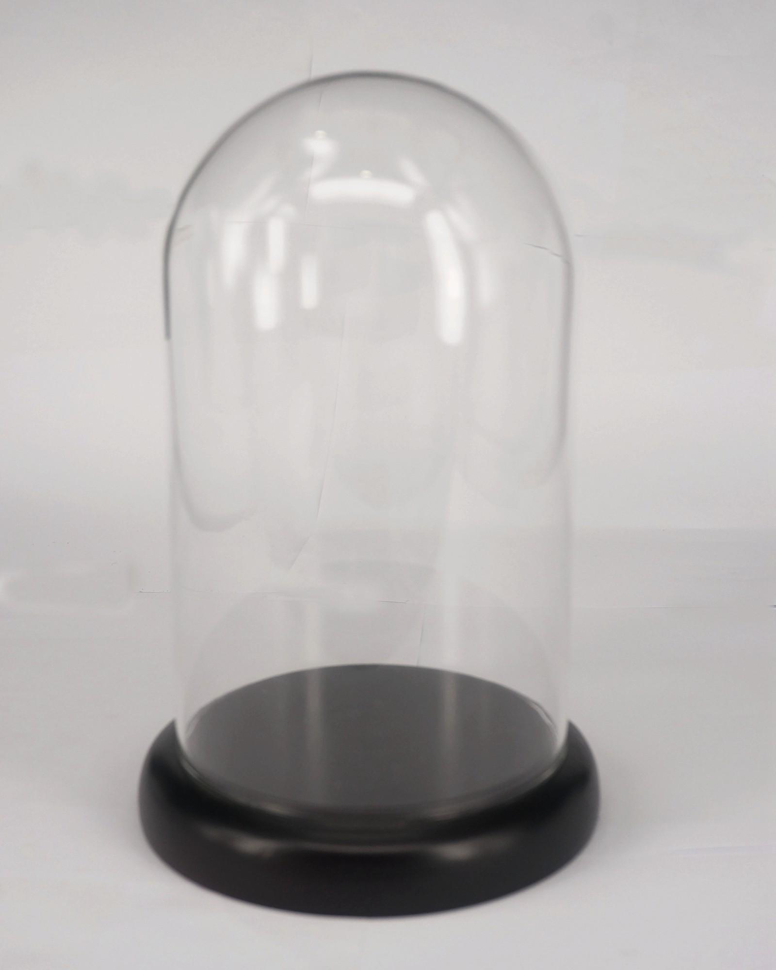 100x160mm Vintage Glass Dome Bell Jar With Dark Wooden Base Window Display Lab Use plath s the bell jar