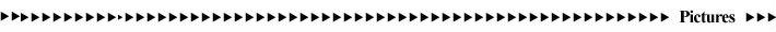 12 v regulador de tensão retificador combo