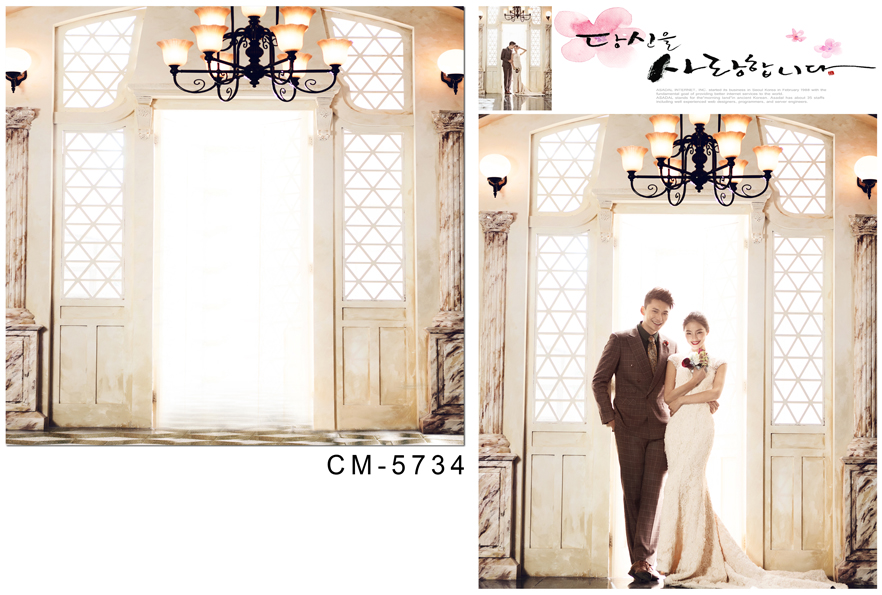 Customize vinyl cloth print light hall wedding photo wallpaper studio background for portrait photography backdrops CM-5734 customize vinyl cloth print 3 d night city scenery wallpaper photo studio background for portrait photography backdrops cm 5883