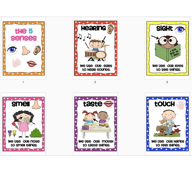 6Pcs/Set Kid all about myself English Five Sense Poster Classroom ...