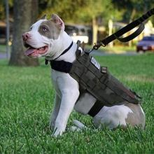 Dog font b Pet b font Harness Military Vest Walking Hiking Hunting Tactical Water Resistant Training