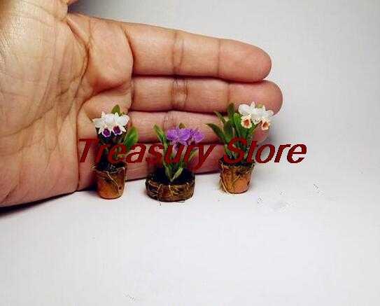 100 шт. мини Орхидея Цветы для комнат семена многолетника для внутренних помещений цветы для дома и сада горшках цветы фаленопсис карликовые деревья