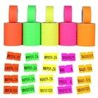 500pcs/roll Colorful...