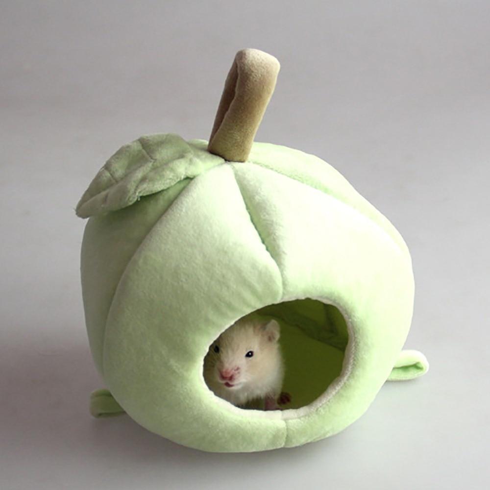 hammock for rats (8)