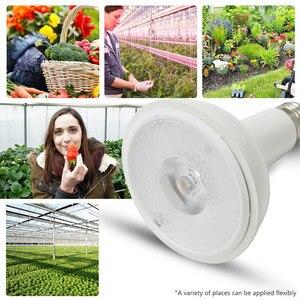Image 2 - 1PCS Volledige Spectrum COB LED Licht Groeien CREE CXA1512 20W Groeiende Lamp Indoor Plantengroei Panel Verlichting Plant veg en Bloei