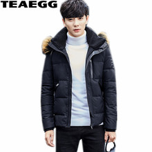 TEAEGG Real Big Raccoon Fur Collar Men's Jackets Duck Down Duck Jacket Men Coat High Quality Chaqueta Plumas Hombre Parkas AL373