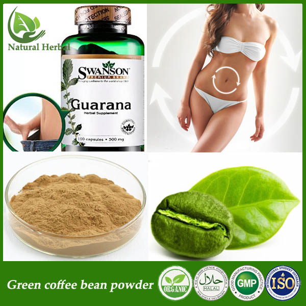 Kosher Pure Green Coffee Bean Extract Green Coffee Bean Extract