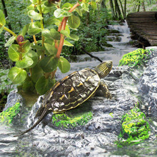 Behogar Ramp Step Ledge Platform Tortoise Turtle Reptiles Terrace Cave for Aquarium Turtle Tank Decoration Ornaments Accessories
