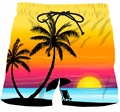 Mens Summer Vacation Casual Short Pants Beach COCO Tree Sunset Scenery 3D Shorts Male Hip Hop Streetwear Board Shorts