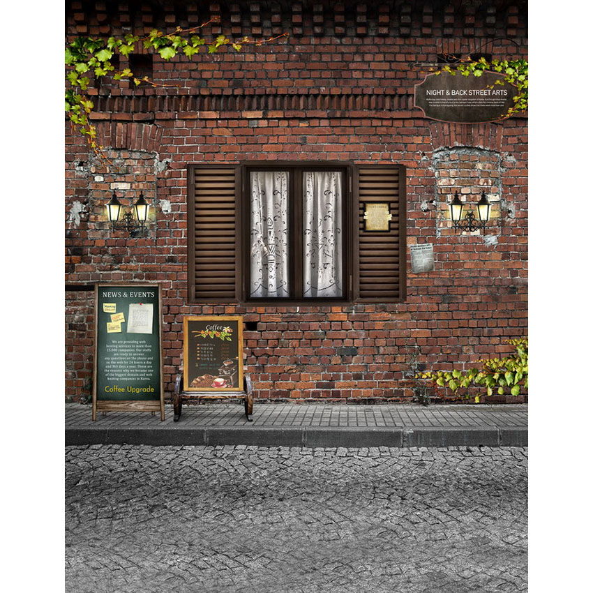 Custom vinyl cloth print retro brick house and window photo studio backgrounds for portrait photography backdrops props S-2158 купить