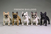 Mr Z Zhu 1 6 Scale Simulation Animals Playing 5 The French Sweetheart French Bulldog 12