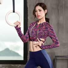 KARYZON Hooded Sports Jerseys Fitness Gym Running Hoodies Training Wear Midriff-baring Shirts Outdoor Tops Leisure Pullovers