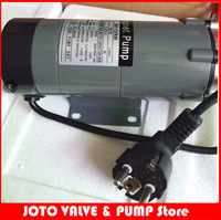 Stainless Steel Thread Interface MP 15RM 10W 50/60HZ 220V Magnetic Drive pump with European standard plug