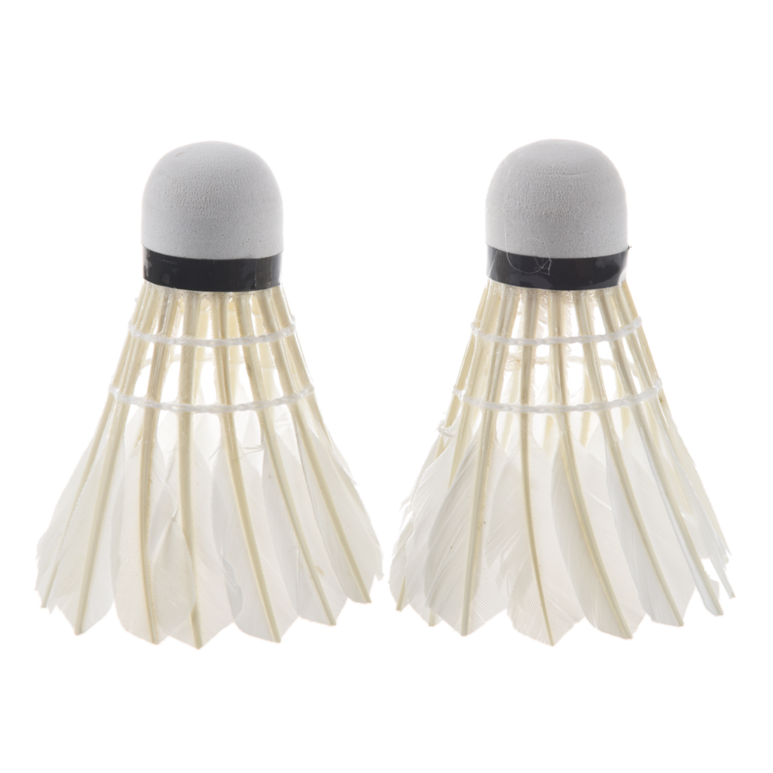 LED Badminton Light