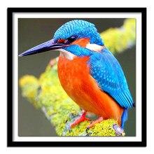 3d diy diamante bordado kingfisher quadrado completo diamante cor pássaro redondo cheio pintura diamante ponto cruz bonito animal
