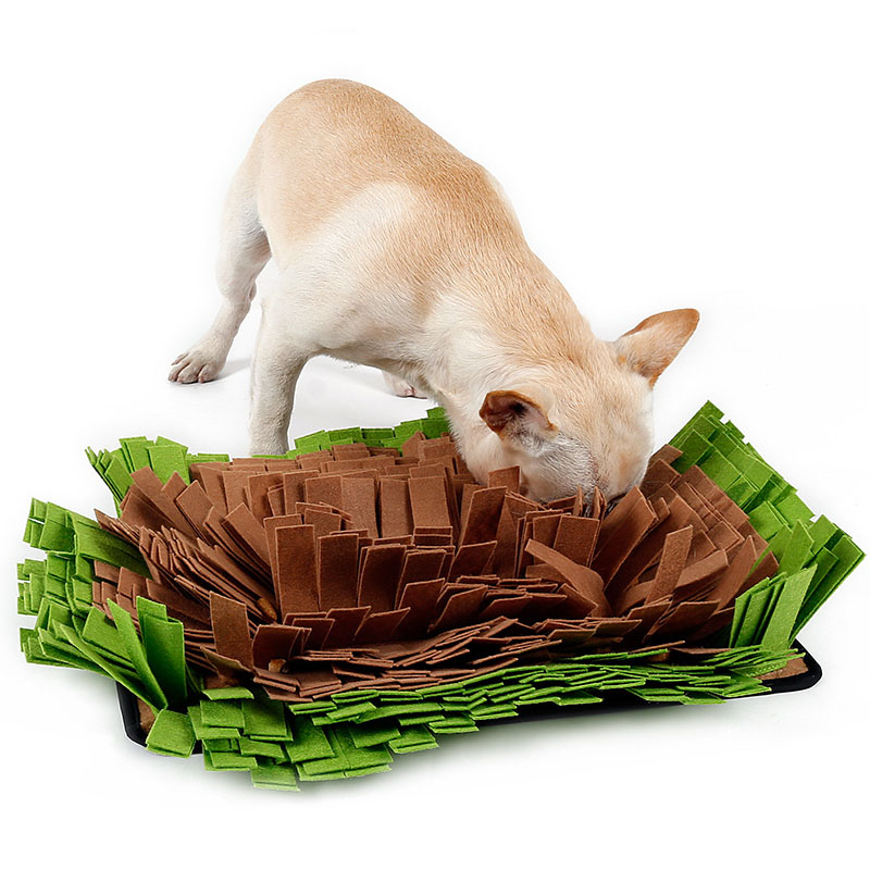 Dog Training Mat Work