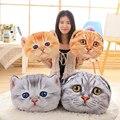 1 шт. 40 см 50 см Продажи Продукта Милые Коты-Аристократы Мари Cat Плюшевые Игрушки Аниме Животных Лапы Комплект Куклы Для девушки