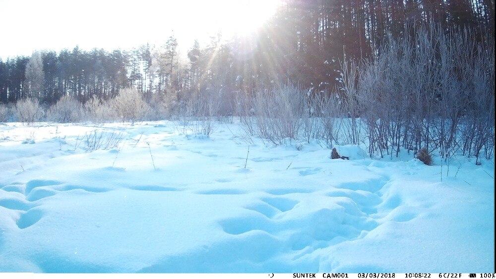água câmera da vida selvagem foto armadilhas câmera chasse scouts