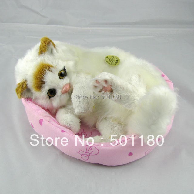 birthday gift free shipping unique cat toys mini plush cat animated
