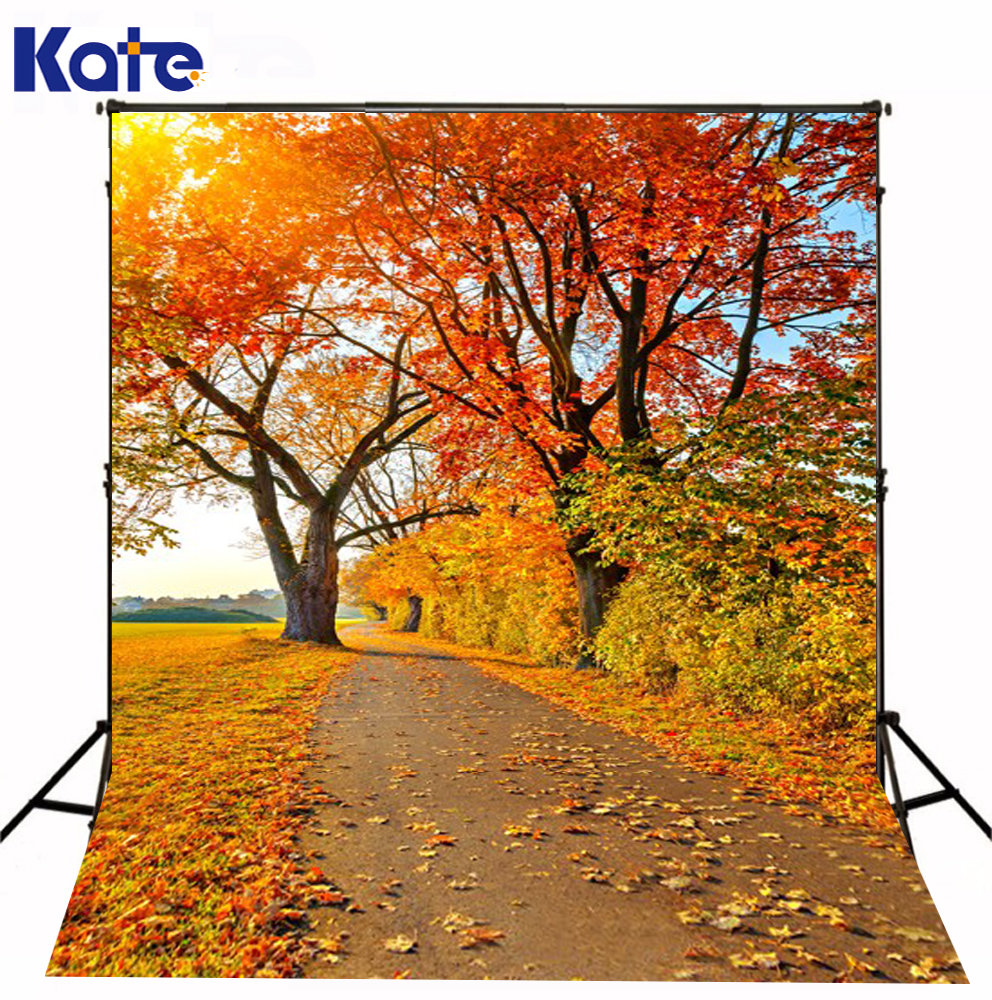 200Cm*150Cm Autumn Maple Trail Sunshine Backdrop Photography Mini Backgrounds Studio Backgrounds  Lk -1641 радиоуправляемая машина hpi racing туринг 1 10 rs4 sport 3 drift subaru brz