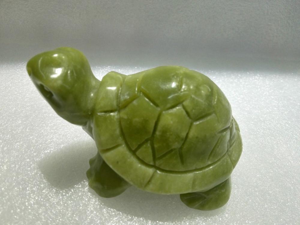 Ornements naturels de tortue de Jade